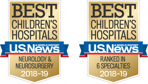 Best Children's Hospital flags