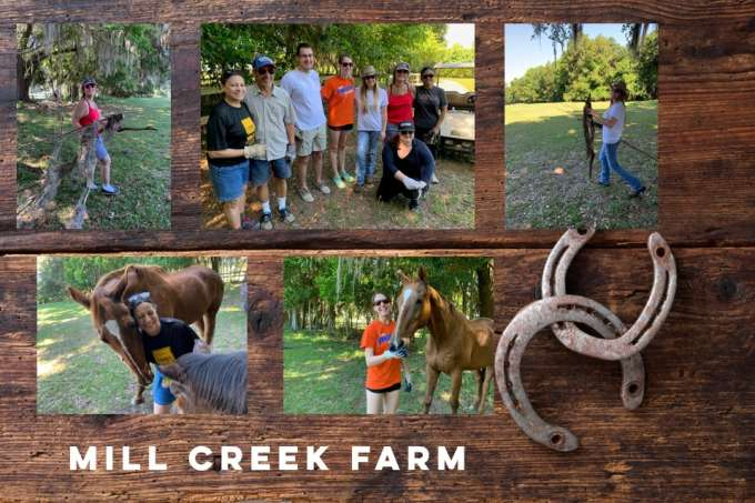 May 2019 – Mill Creek Farm for Retired Horses